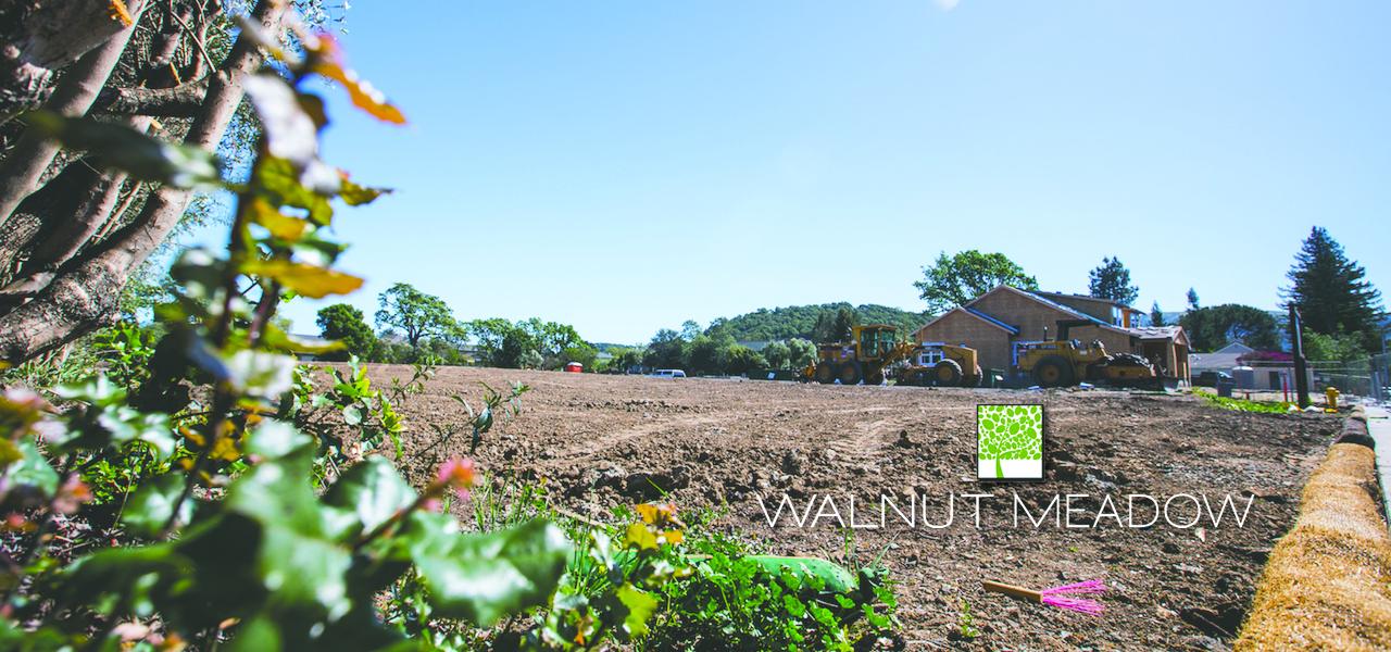 Walnut Meadow Update Feature